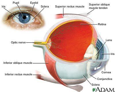 Tips for better eyesight