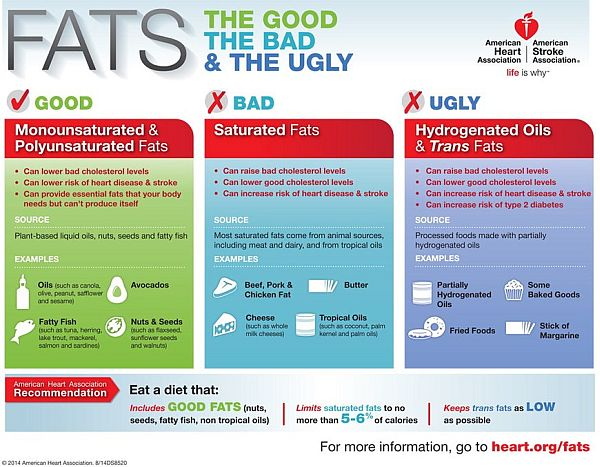dietary fats infographic