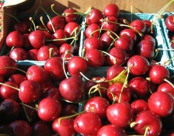 Red-Tart-Cherries