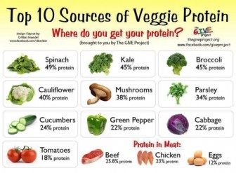 Vegetables can by high in protein. You have to mix them up though to balance the Amino Acids