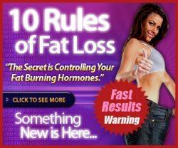 fat loss for idiots
