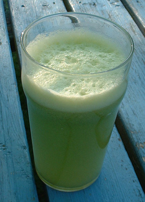 Apple Celery Juice Fasting Recipe