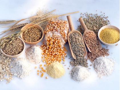 What is a Macrobiotic diet