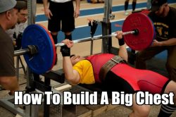 The Keys To Building A Big Chest
