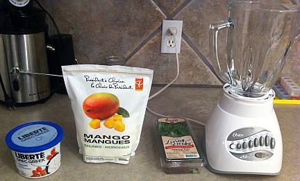 Mango Frozen Yogurt From Your Own Kitchen