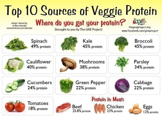 10 sources of veggies protein to increase the protein in your diet