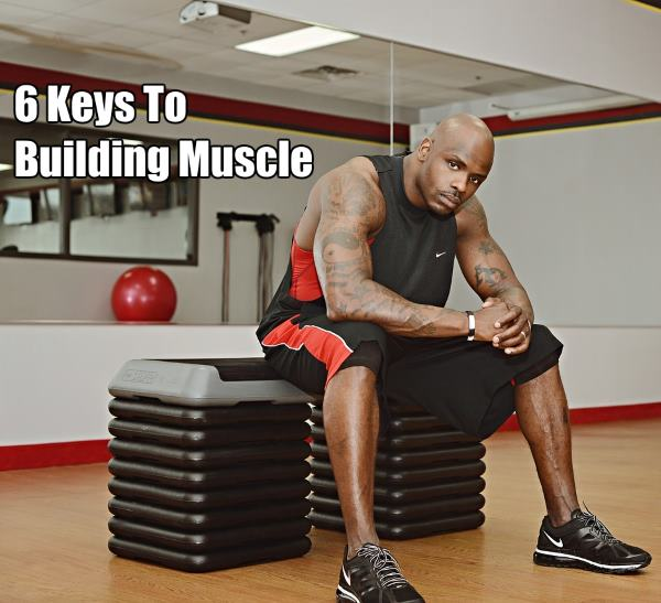 keys to building muscle