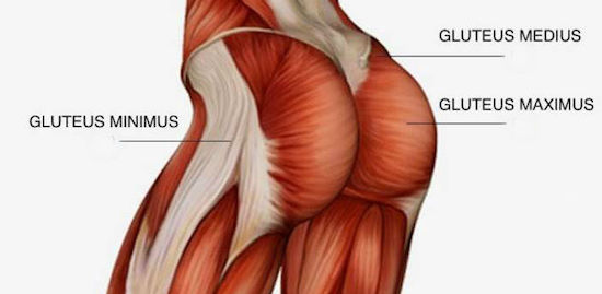 Easing Back Pain Using Glute Activation